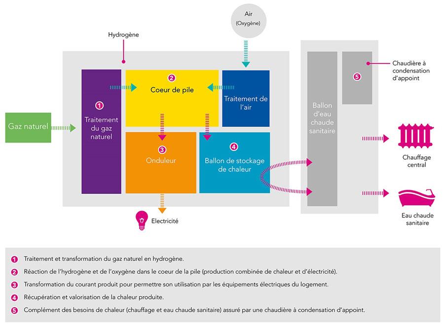 Schéma de fonctionnement de la pile à combustible